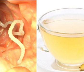 Konsumimi i çajit të xhinxherit largon parazitët e barkut