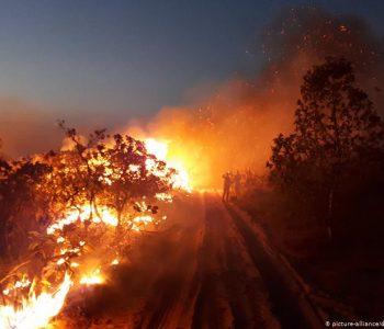 Amazona digjet, Bolsonaro nuk do këshilla nga jashtë