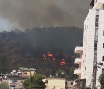 Zjarr në Shëngjin, digjen 5 hektarë pyje