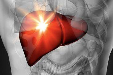 Ja cilat janë gabimet me ushqimet që ju dëmtojnë rëndë mëlçinë