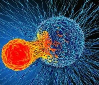 Zbulim i madh, shkencëtarët mund të kenë gjetur kurën për të gjithë gamën e kancereve