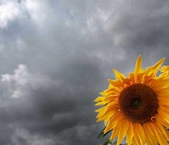 Reshje shiu në zonat malore! Parashikimi i motit për sot në vendin tonë